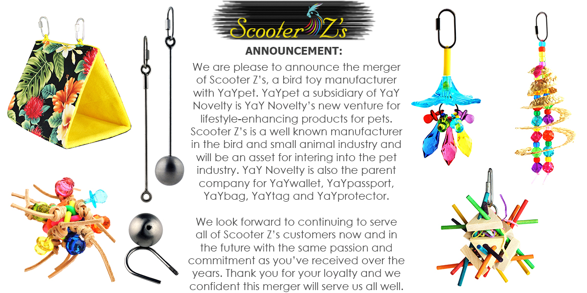 scooter-z-s-annoucement.jpg